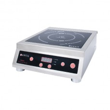 INDUCTION COOKER (1)